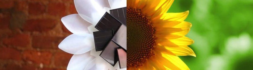 【デザイン業界】安定性がある3Dプリンターと太陽光発電のコラボ